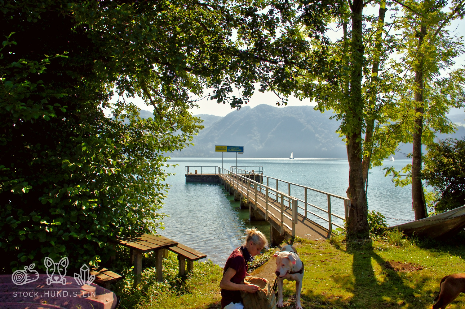 Mord an Bord – am Attersee…