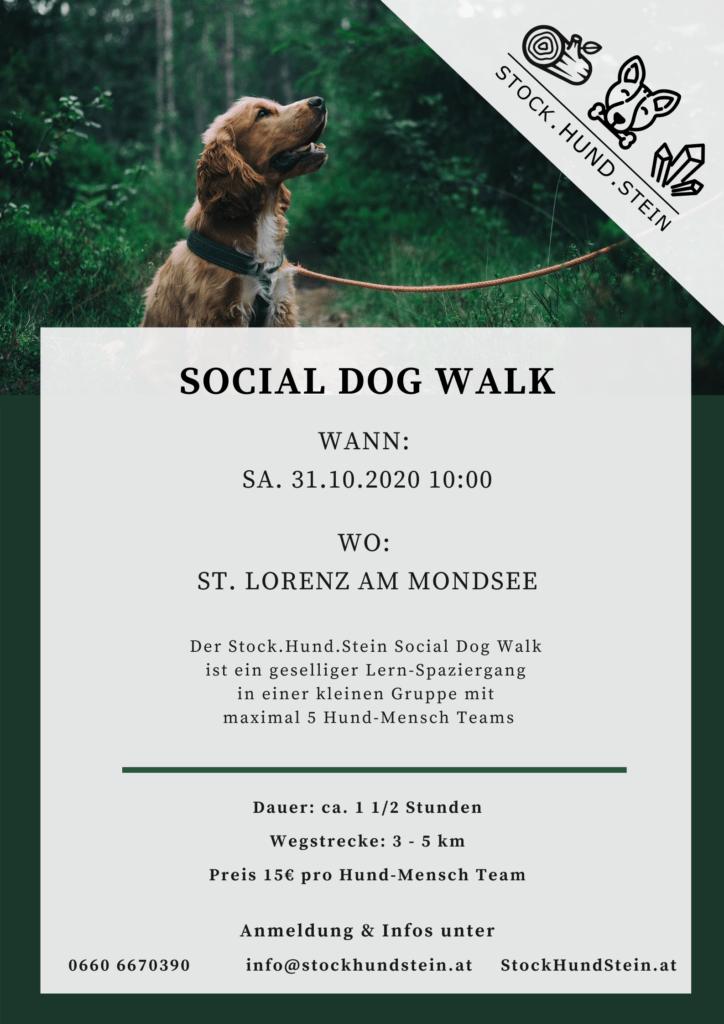 Dog Walk_31.10.2020