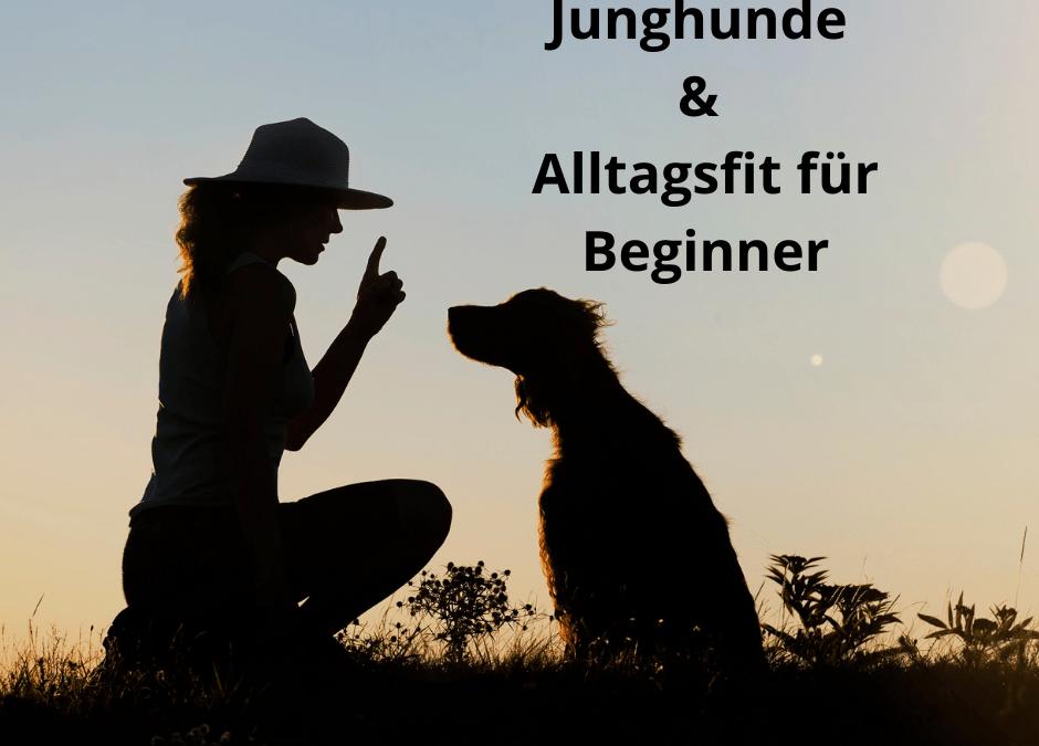 Junghunde & Alltagsfit für Beginner – Samstagskurs